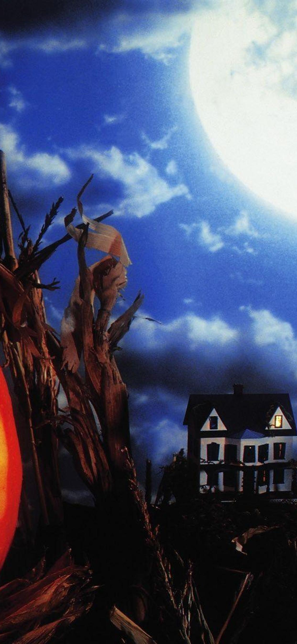 Big Moon And Scary Halloween Pumpkin Hd Wallpaper