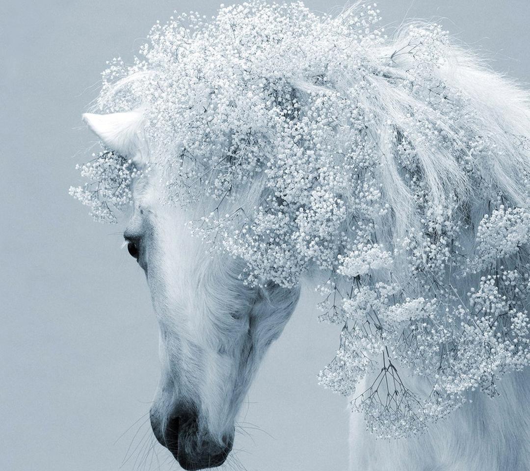 Fantasy White Horse Fantastic Horse Hair