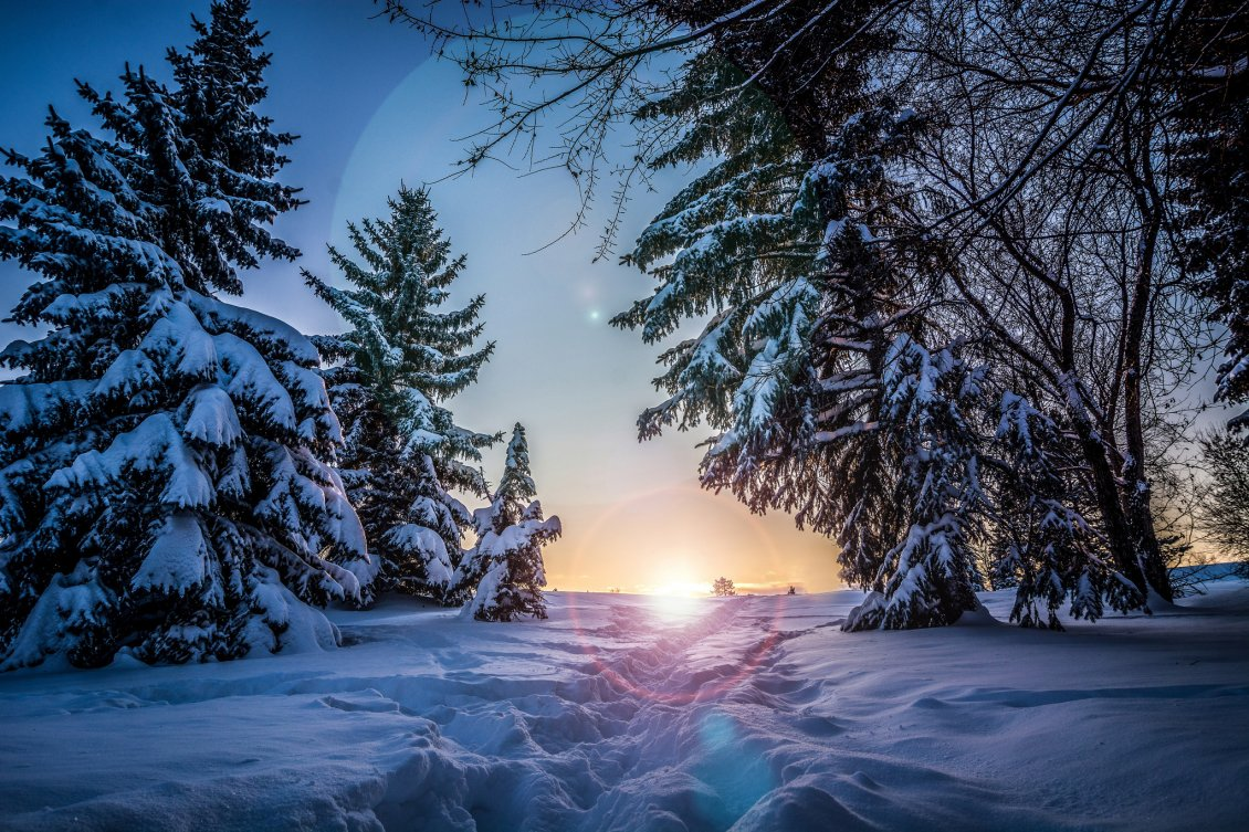 Download Wallpaper Sunset of a winter day. Footprints in the snow