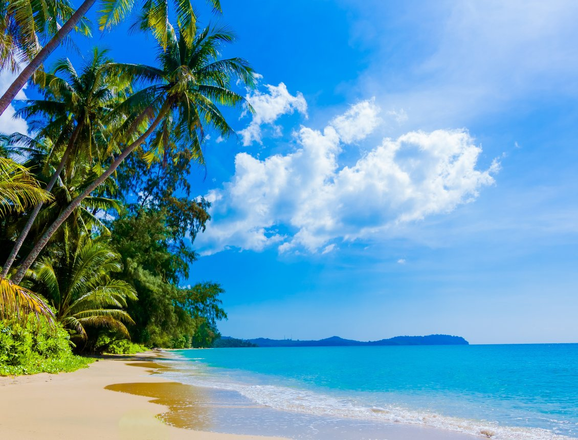 Download Wallpaper Sunny day on the beach HD