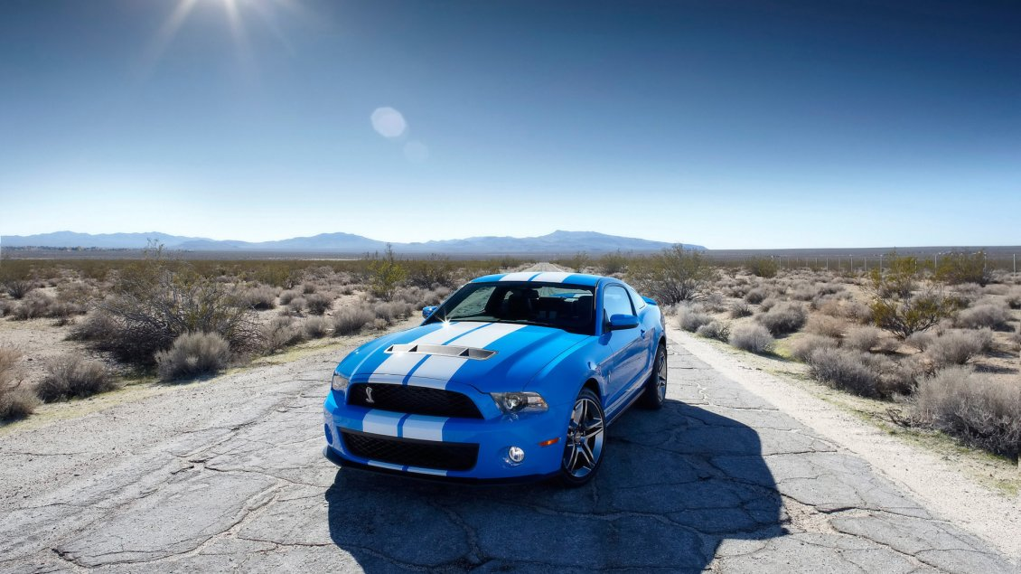 Download Wallpaper Blue Ford Mustang with white lines