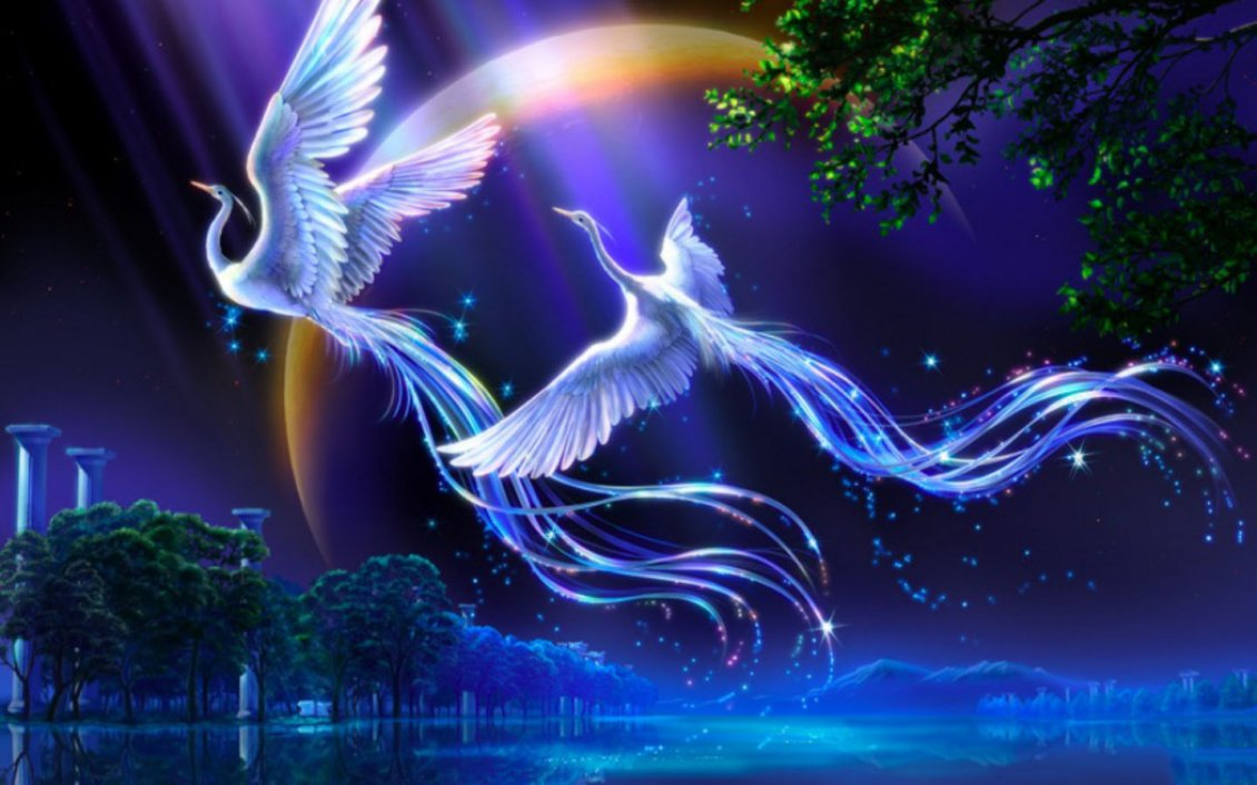 Download Wallpaper Two artistic white birds flying in the night