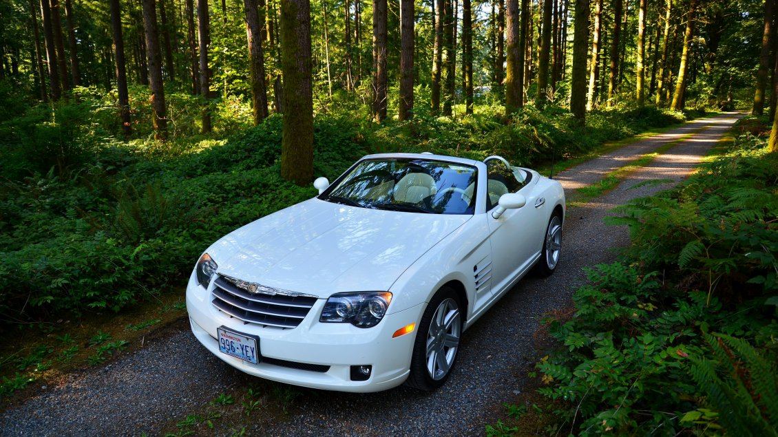 Download Wallpaper White convertible Chrysler Crossfire in the forest