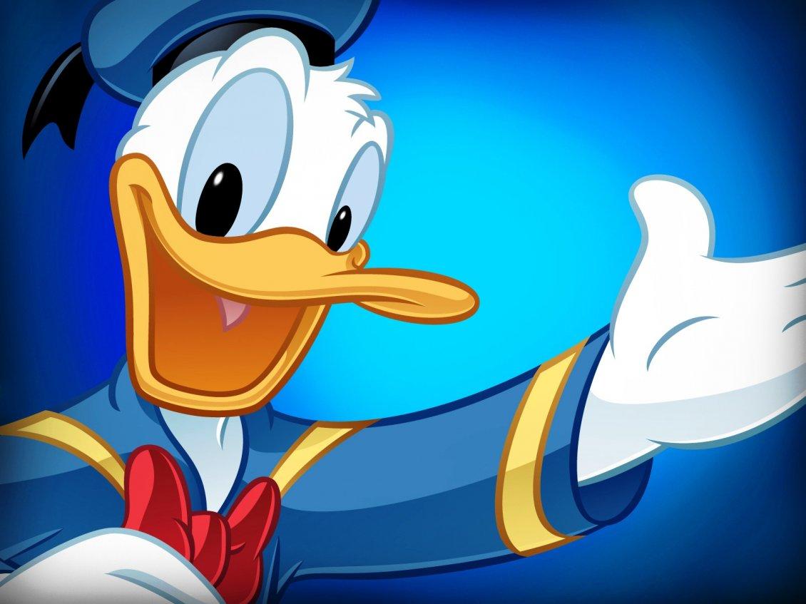 Download Wallpaper Donald Duck in blue - Cartoon wallpaper