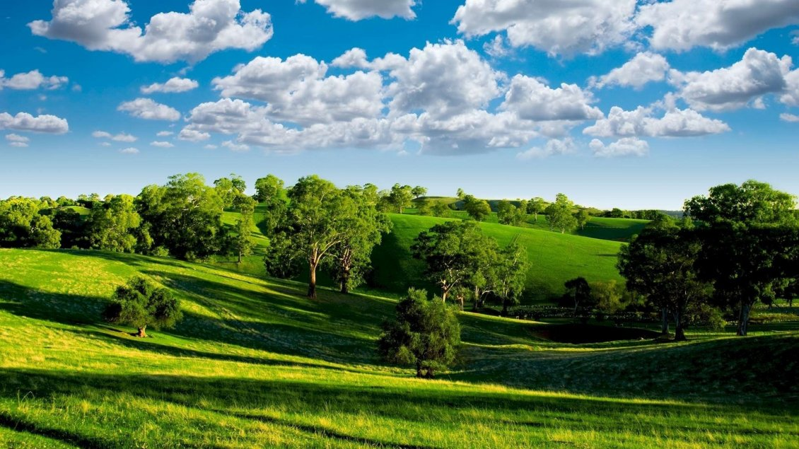 Beautiful Sunny Day Of Summer Nature Landscape
