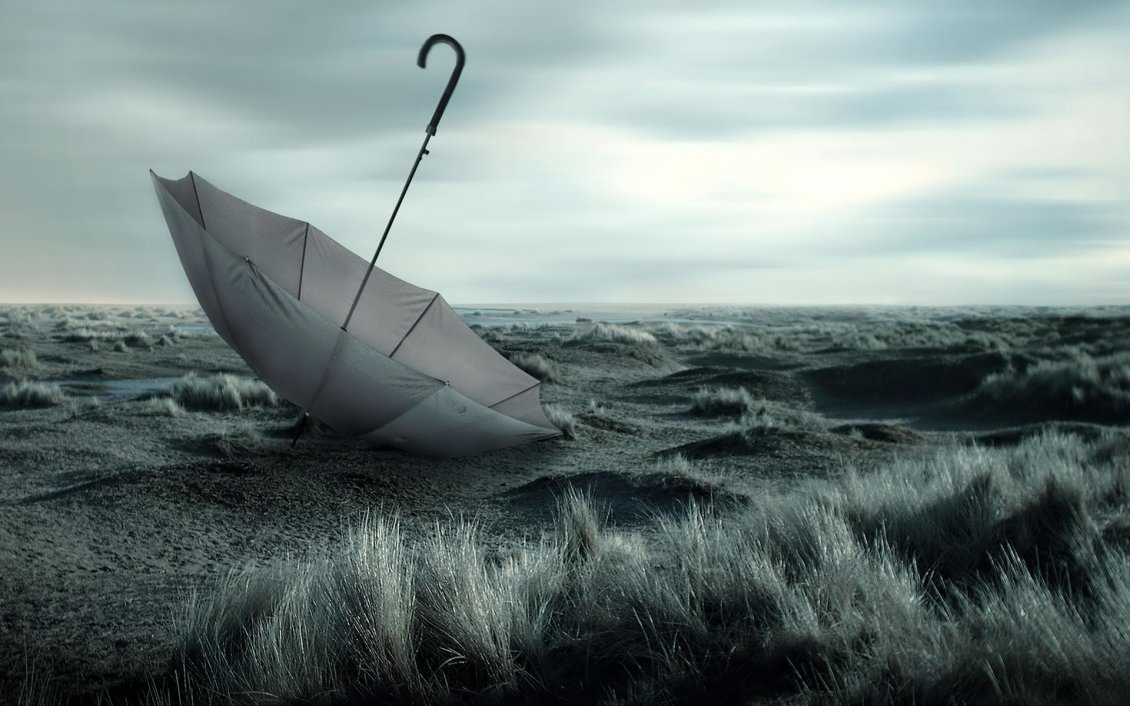 Stupendous Lost Umbrella On The Field Windy Weather Best Image Libraries Sapebelowcountryjoecom