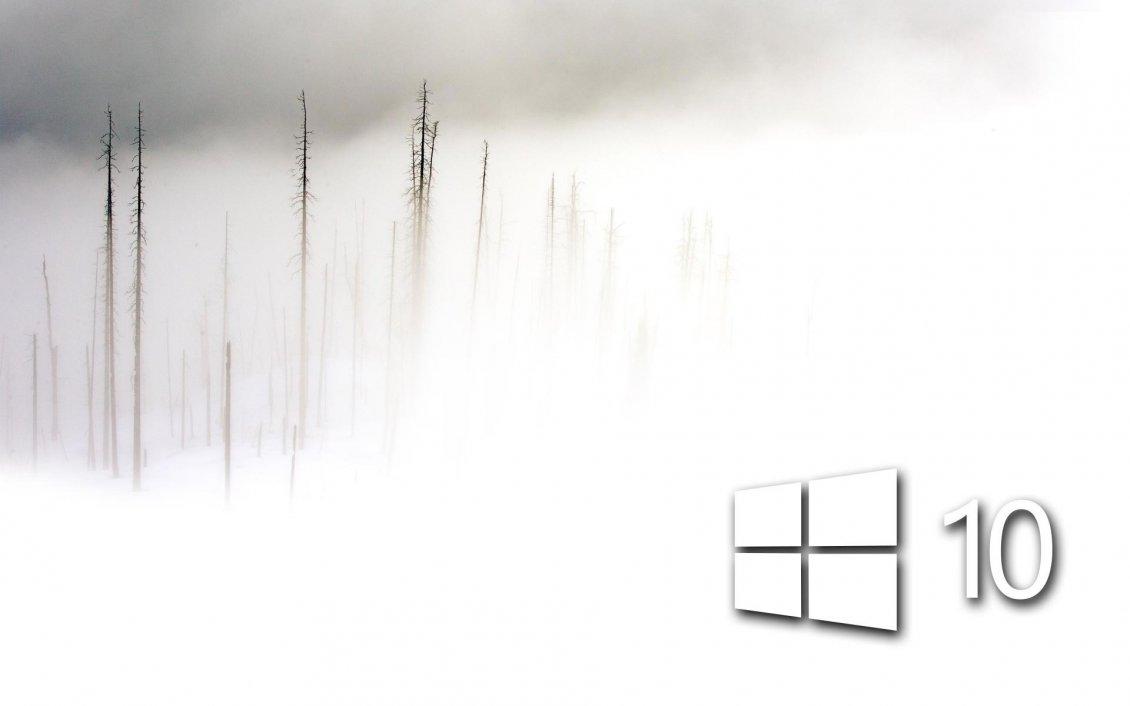 White Windows 10 in the foam - frozen wallpaper