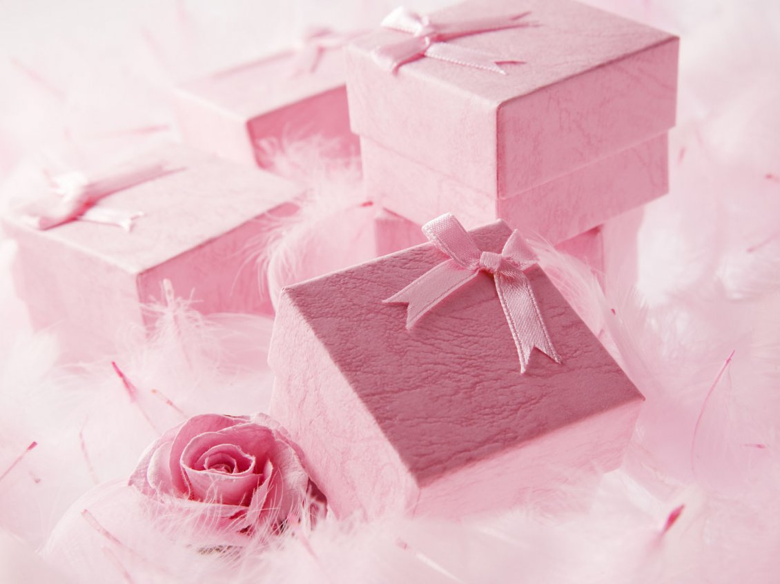 Download Wallpaper Beautiful pink gift for a special Valentine's Day