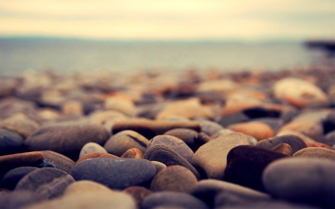 Beautiful Rocks From The Beach Macro Hd Wallpaper