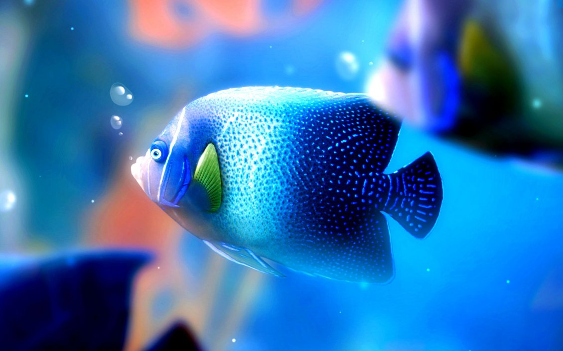 Download Wallpaper Big blue fish under the water - HD wallpaper