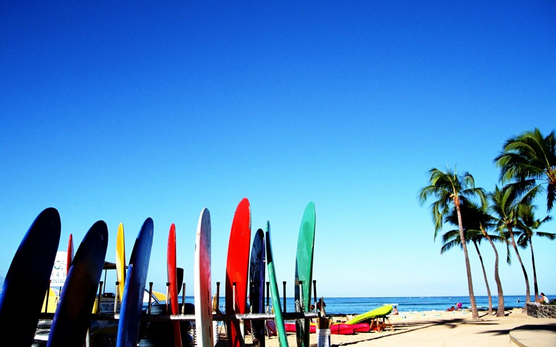 Download Wallpaper Colored surfboards at the beach - summer sport on the water