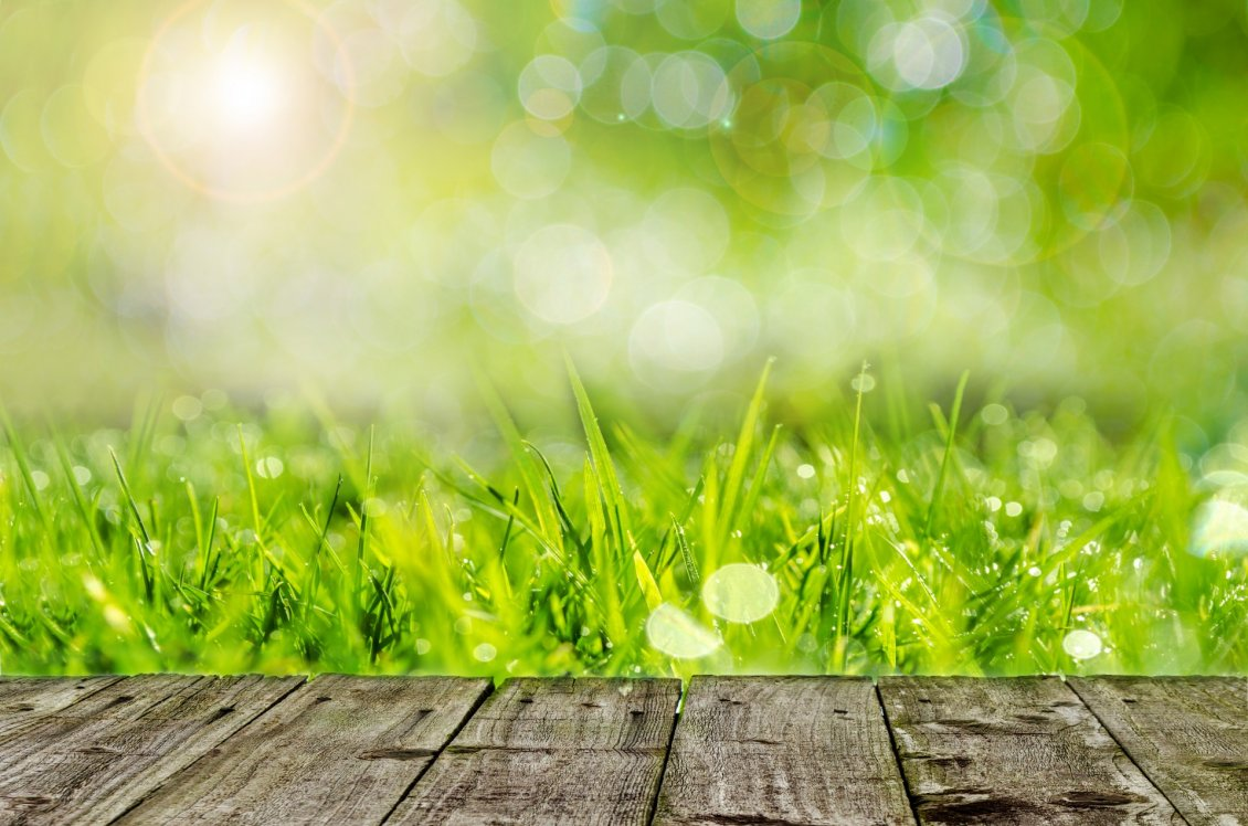 Download Wallpaper Wooden table in the garden - Wonderful green grass
