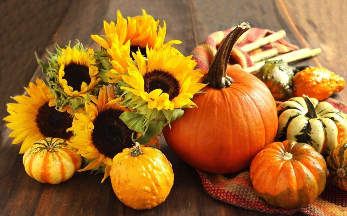 Download Wallpaper Sunflowers and pumpkins - Halloween party