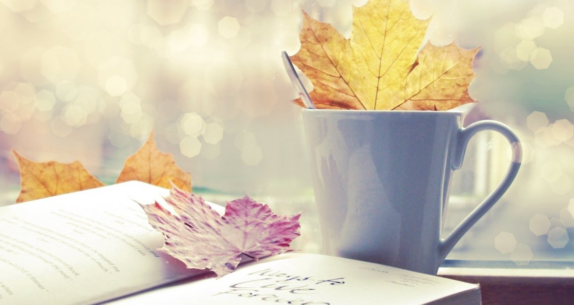 Download Wallpaper Read a wonderful book and drink a cup of hot tea in Autumn