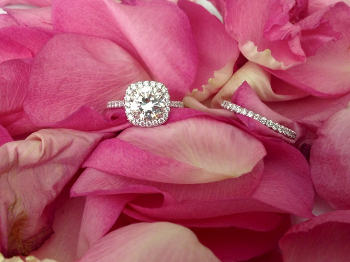 Download Wallpaper Silver ring and pink rose petals - Happy Valentines Day