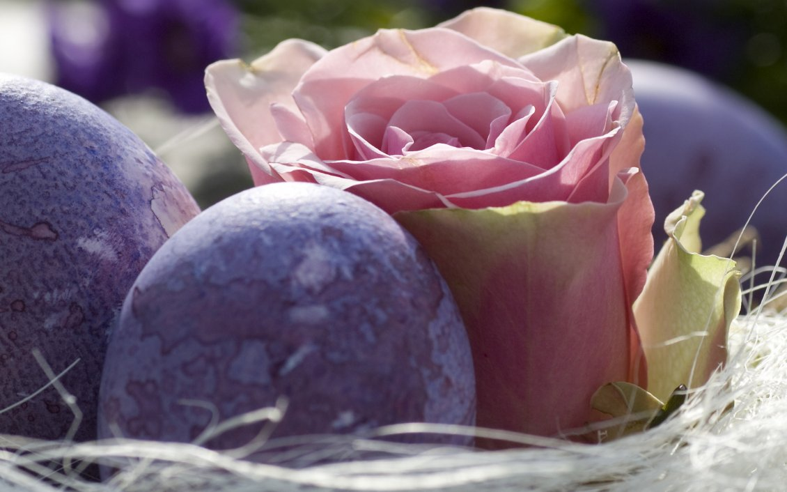 Beautiful Pink Rose And Purple Easter Eggs On A Basket