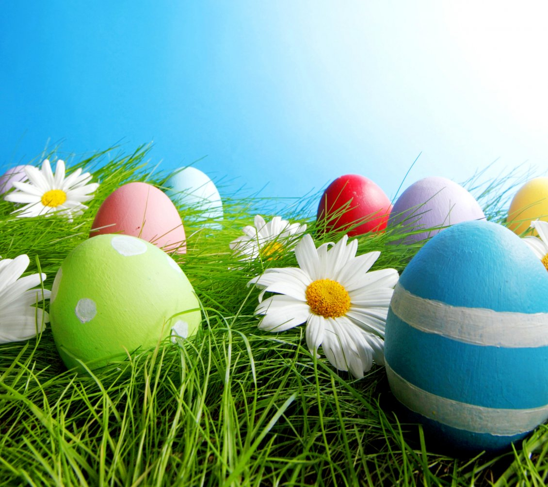 Download Wallpaper Painted eggs in grass and white flowers - Easter holiday