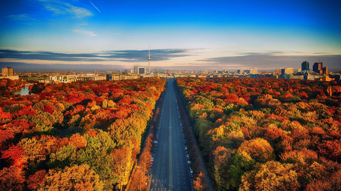 Download Wallpaper Beautiful highway through forest - Autumn season