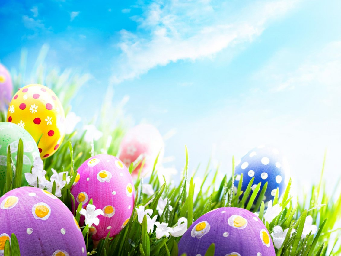Download Wallpaper Good morning wonderful spring Easter Holiday - Color eggs
