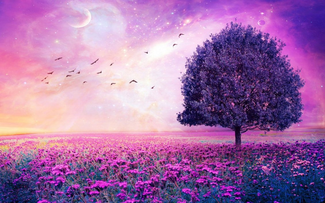 Download Wallpaper Wonderful pink nature- Birds on the sky magic romantic field