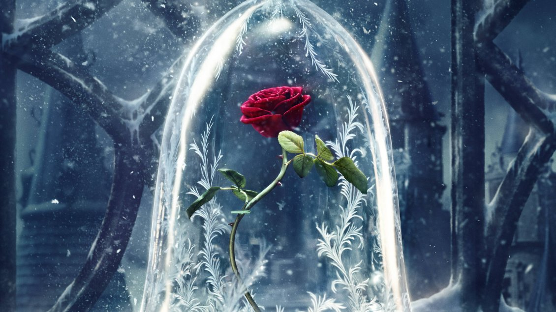 Download Wallpaper Wonderful red rose in a crystal globe - HD wallpaper