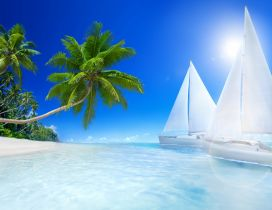Tropical beach, palms and sailboat on the sea