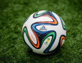 The Brazuca ball on the grass - Fifa World Cup