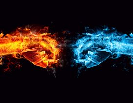 Two hands, one of flames and one of ice