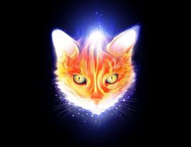 Abstract head cat in flames