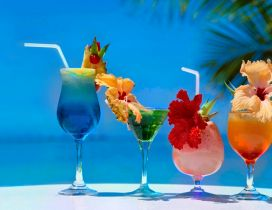 Four different cocktails on the beach
