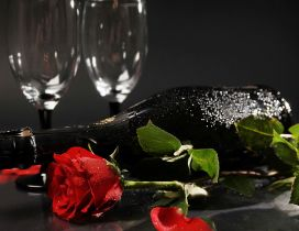 A red wine bottle near a red rose