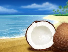 Halved coconut on the sand beach - Summer time