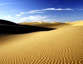 Sahara the best largest desert in the world