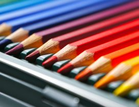 Many colored crayons - 3D and HD wallpaper