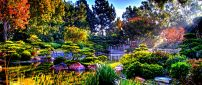 Colorful nature in the sun rays - Japanese Garden Wallpaper
