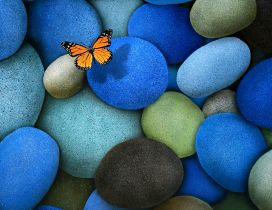 An orange butterfly flies over the colored stones