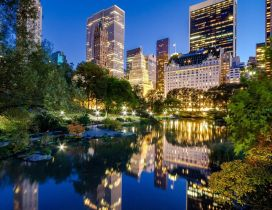 Central Park from New York - Stunning place