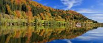 Bavaria forest reflected in water - Landscape wallpaper