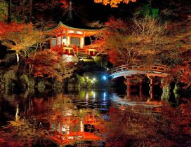 An amazing japanese garden - Colorful nature