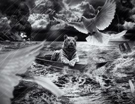 A tiger in a boat at sea and birds flying