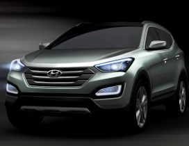 Gorgeous Hyundai Santa FE - Gray car