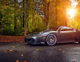 Gorgeous gray Ferrari on road in the forest