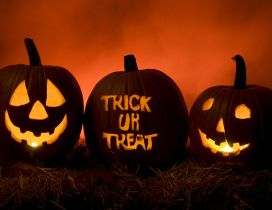 Trick or Treat - Happy Pumpkins of Halloween