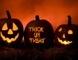Three funny pumpkins - Happy Halloween Trick or Treat