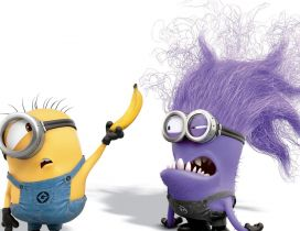 Crazy and funny minions - HD wallpaper