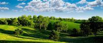 Beautiful sunny day of summer - nature landscape