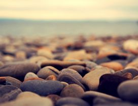 Beautiful rocks from the beach - Macro HD wallpaper