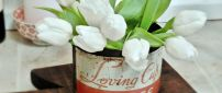 Beautiful white tulips in an old coffee can