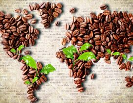 The map of coffee - special history