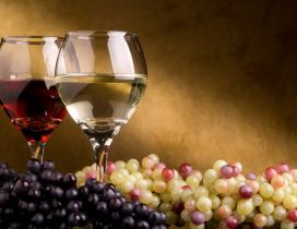 Delicious grapes and fine wine - HD wallpaper